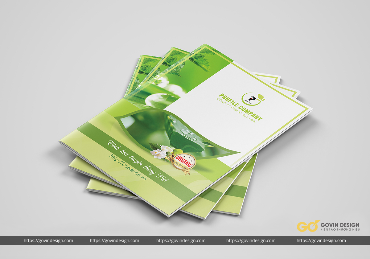Mockup Catalogue cho Design