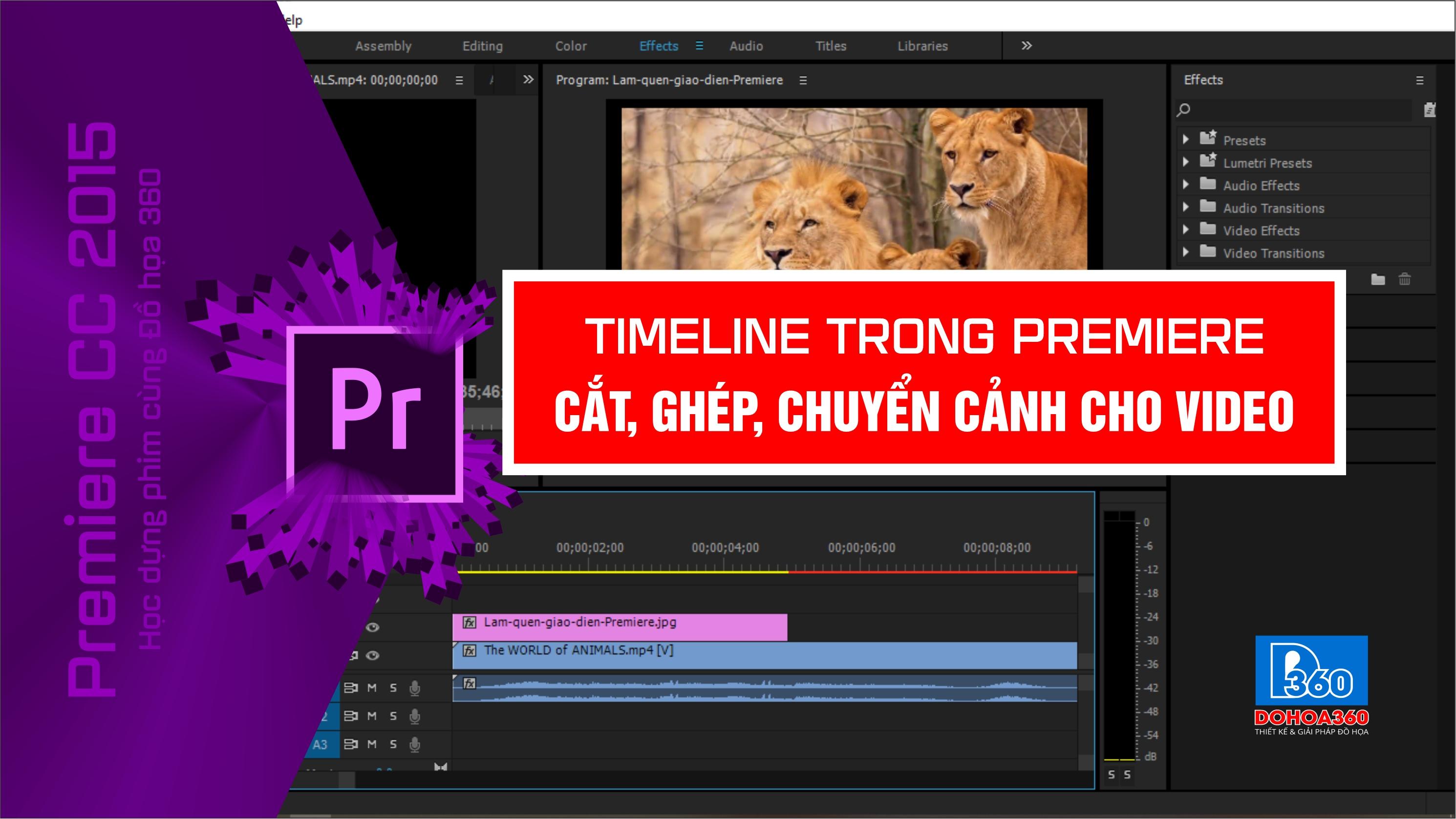 Timeline, Cắt, ghép video  trong Premiere