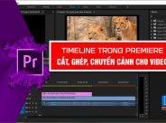 Cat-ghep-video-trong-Premiere-3dzyopqipatlpvnu9nysjk.jpg
