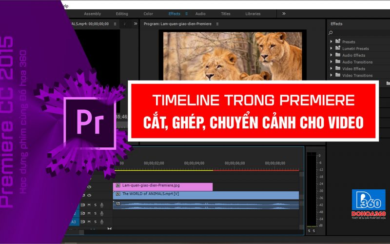 Cat-ghep-video-trong-Premiere-3dzyopqjpeuo6vj9rjs6ps.jpg